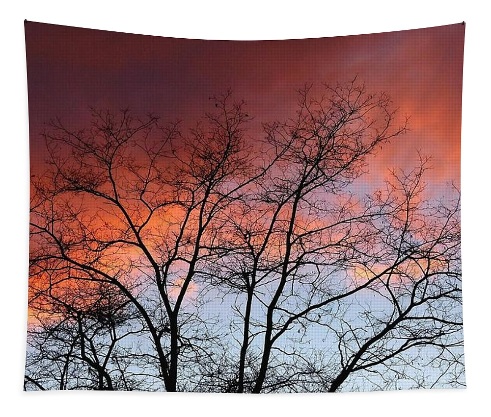 #januarysunsetsilhouette Tapestry featuring the photograph January Sunset Silhouette by Will Borden