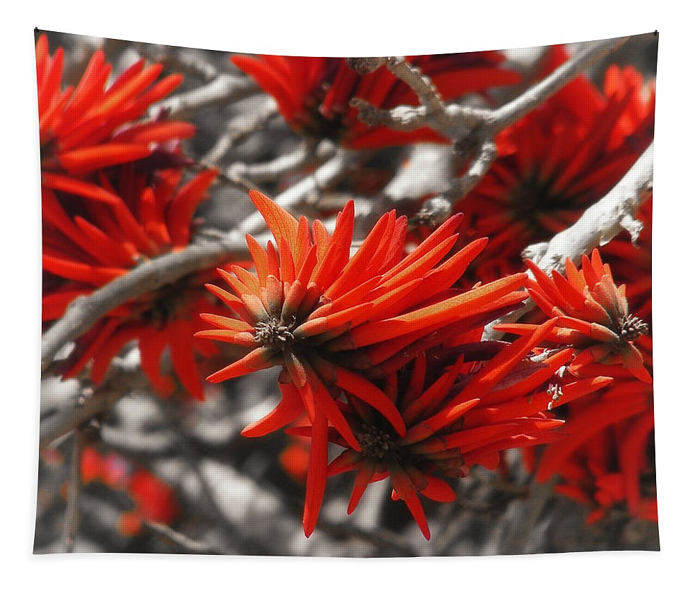 Red Kangaroo Tree Exotic Flower Tapestry featuring the photograph Kangaroo Paw by Mary Lane