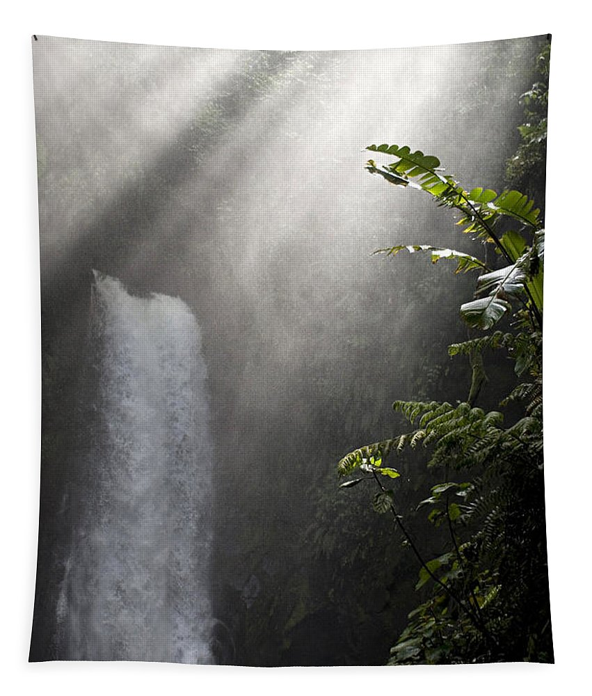 Waterfall Tapestry featuring the photograph La Paz Waterfall Costa Rica by Bob Christopher