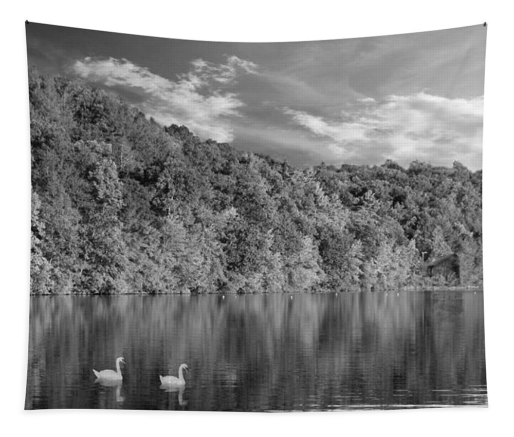 Lake Tapestry featuring the photograph Late Afternoon At The Lake - Bw by David Dehner