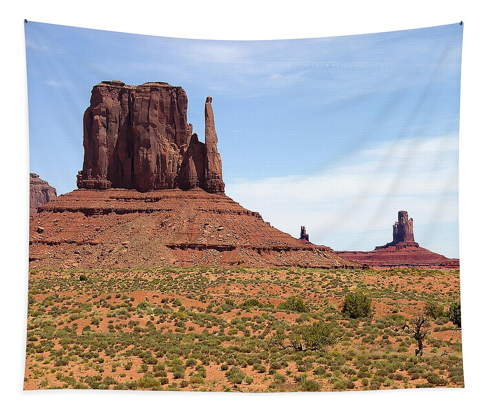 Butte Tapestry featuring the photograph Left Mitten by Mary Lane