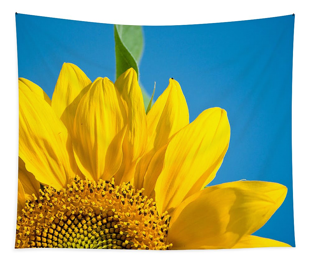 Sunflower Tapestry featuring the photograph Life Is Good Today by Trish Tritz