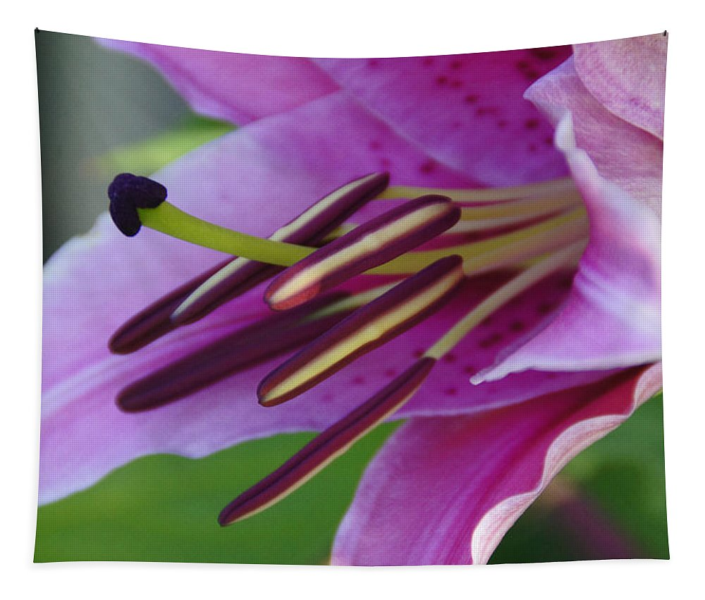 Lily Tapestry featuring the photograph Lily In Full Bloom by Mick Anderson