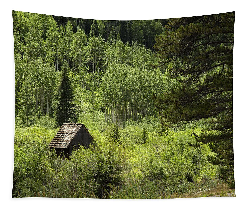 Landscape Tapestry featuring the photograph Little House - Vail by Madeline Ellis
