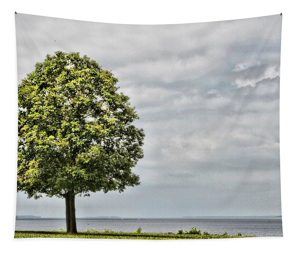 Tree Turkey Point Lighthouse Delaware Scenic Overlook Water Tapestry featuring the photograph Lonely Tree by Alice Gipson
