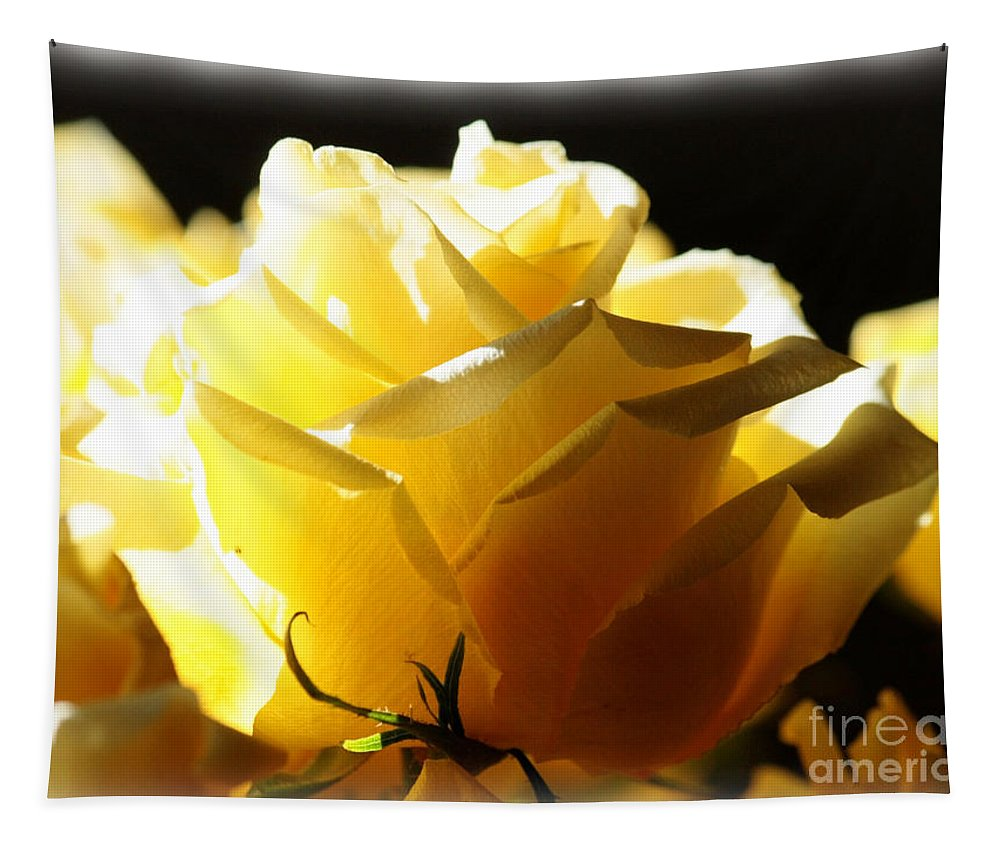 Yellow Rose Tapestry featuring the photograph Look On The Bright Side by Carol Groenen