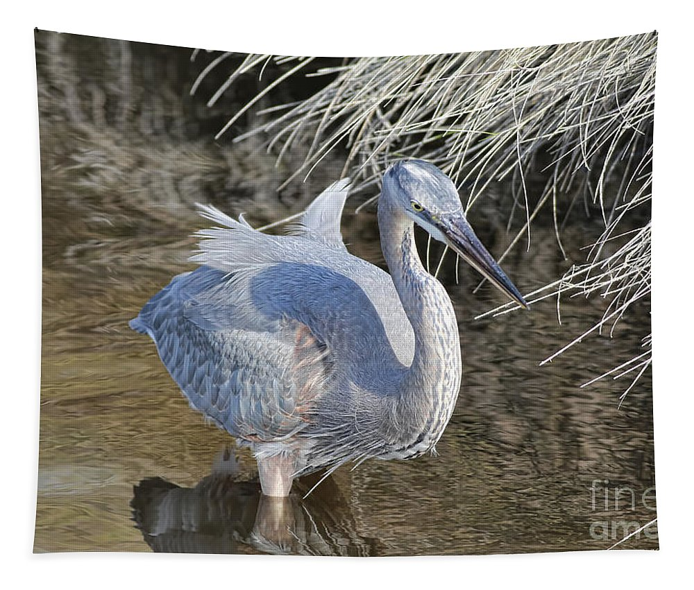 Blue Heron Tapestry featuring the photograph Looking For Those Fish by Deborah Benoit