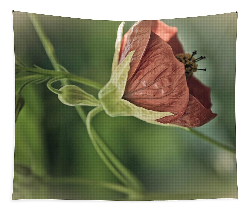 Plant Tapestry featuring the photograph Lovely Lady by Trish Tritz