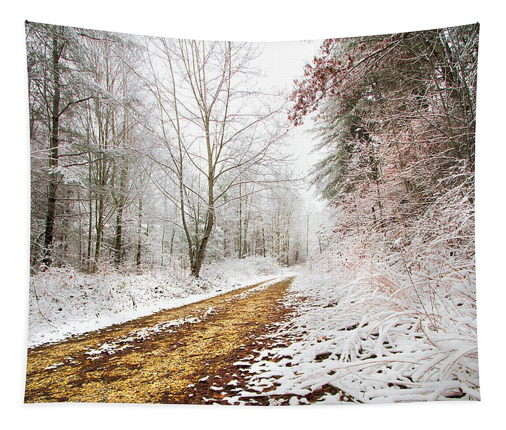 Andrews Tapestry featuring the photograph Magic Trail by Debra and Dave Vanderlaan