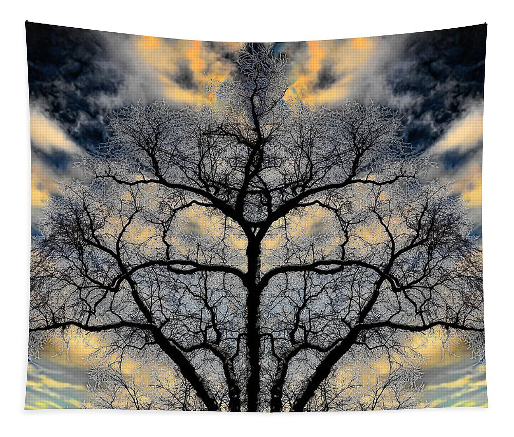Hakon Tapestry featuring the photograph Magical Tree by Hakon Soreide
