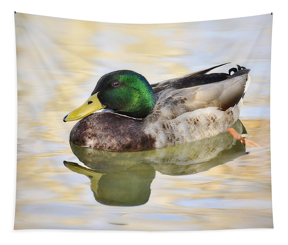 Mallard Duck Tapestry featuring the photograph Mallard by Saija Lehtonen