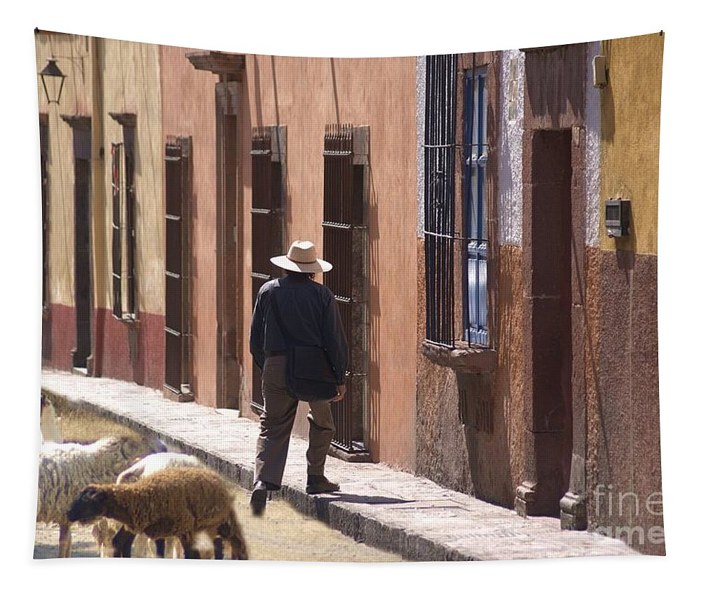 Sheep Tapestry featuring the photograph Man Quits The Herd by John Kolenberg