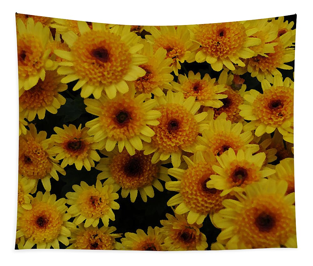 Mums Tapestry featuring the photograph Many Mums by Mike Martin
