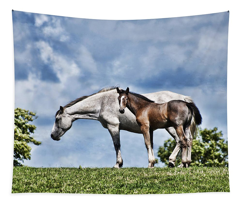 Mare And Foal Tapestry featuring the photograph Mare And Foal by Steve Purnell