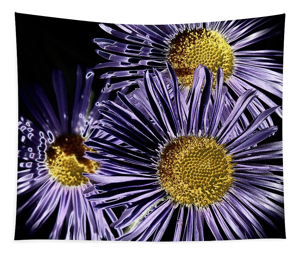 Digital Art Tapestry featuring the photograph Metallic Daisies by David Patterson
