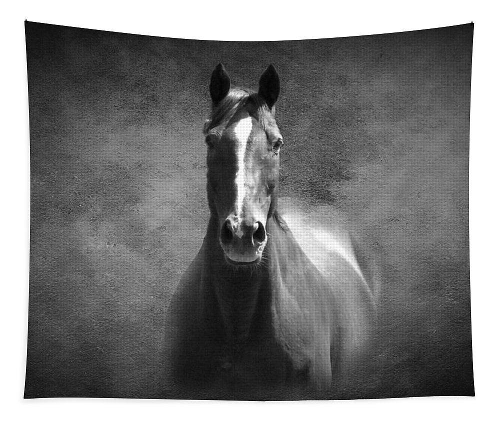 Horse Tapestry featuring the photograph Misty In The Moonlight Bw by David Dehner