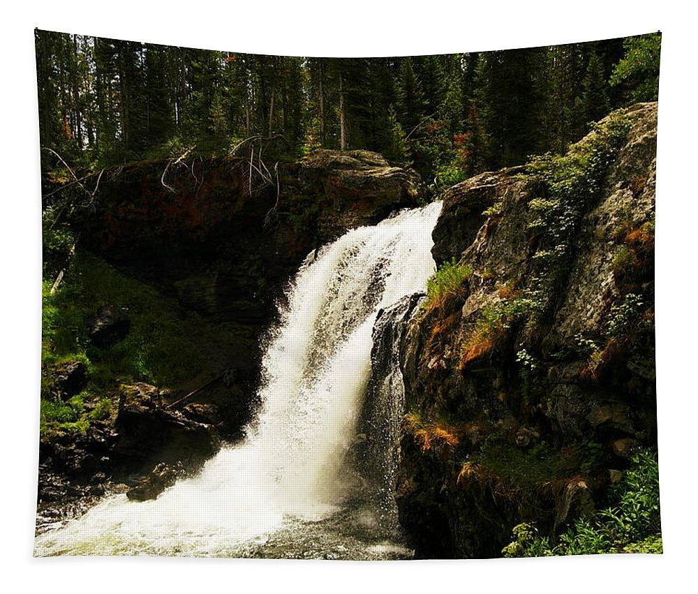 Waterfalls Tapestry featuring the photograph Moose Falls by Jeff Swan