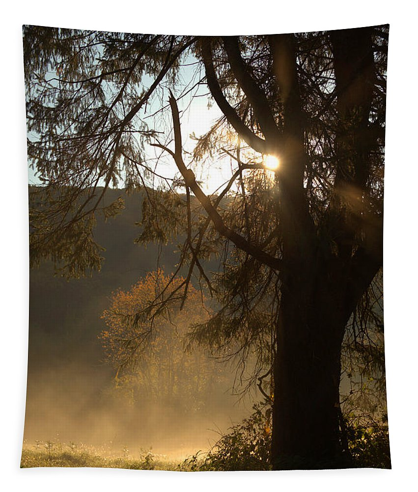 Morning Tapestry featuring the photograph Morning Has Broken by Karol Livote