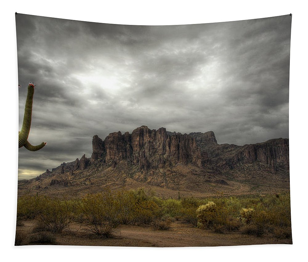 Sunrise Tapestry featuring the photograph Morning In The Supes by Saija Lehtonen