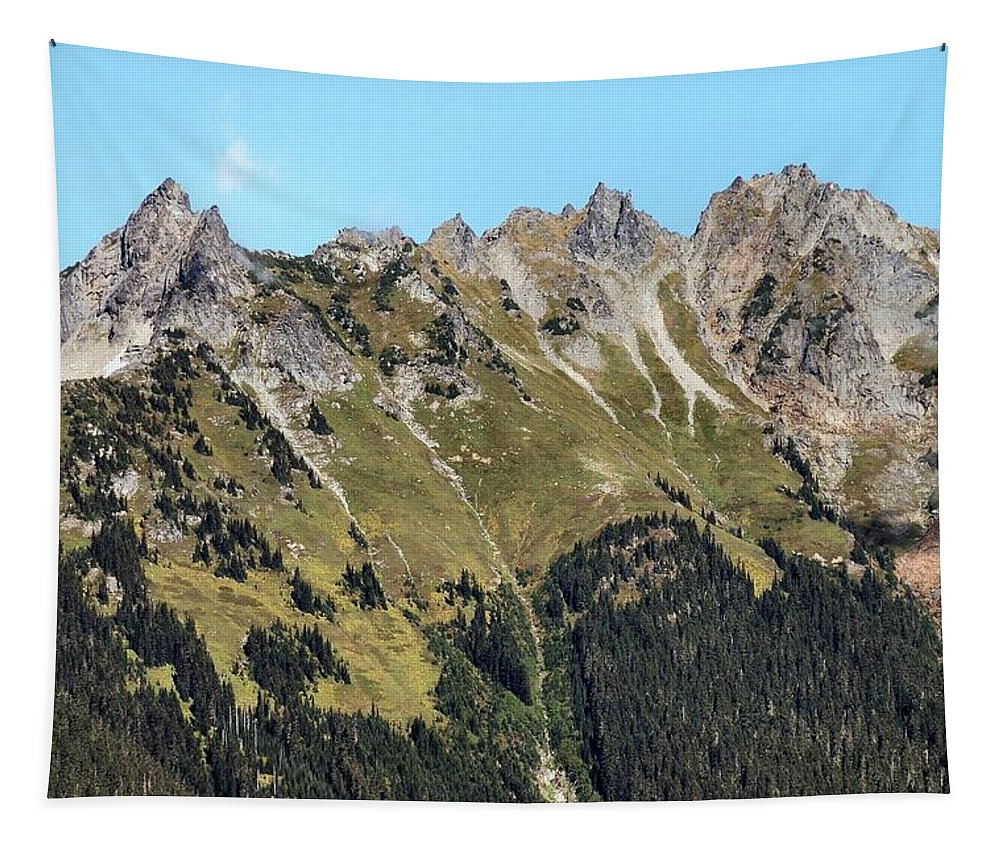 Baker Tapestry featuring the photograph Mount Baker National Forest by Michael Merry
