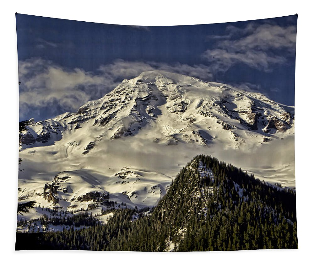 Mount Tapestry featuring the photograph Mt Rainier by Heather Applegate