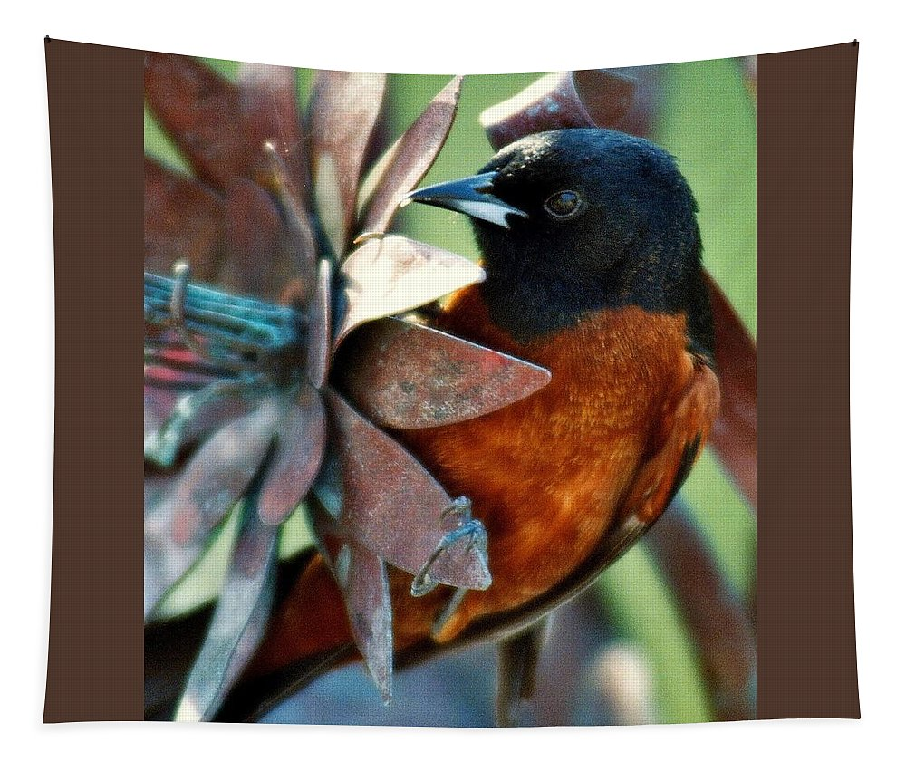 Birds Tapestry featuring the photograph My Orange Taniger by Karen Wiles