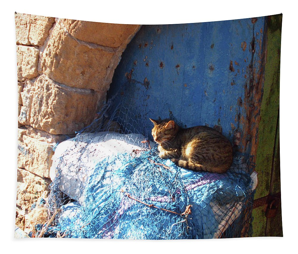 Travel Tapestry featuring the photograph Nap After The Meal by Miki De Goodaboom