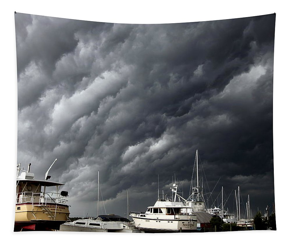 Storms Tapestry featuring the photograph Nature's Fury by Karen Wiles