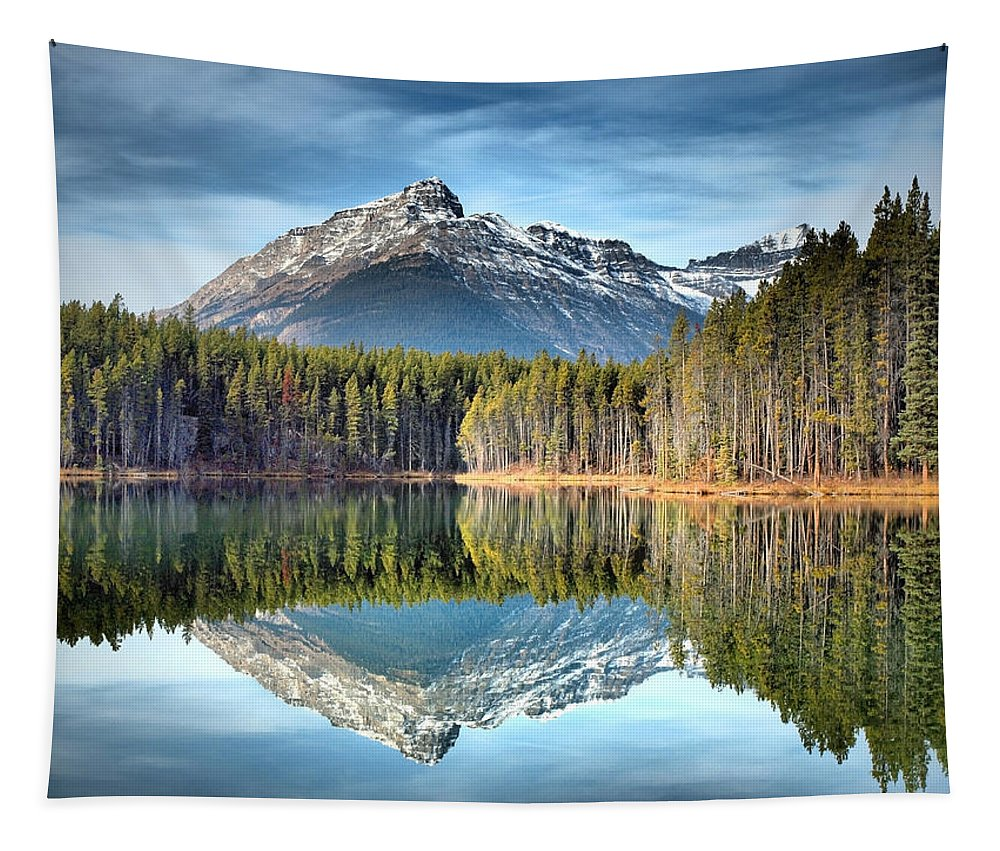 Mountains Tapestry featuring the photograph Nature's Reflections by Tara Turner
