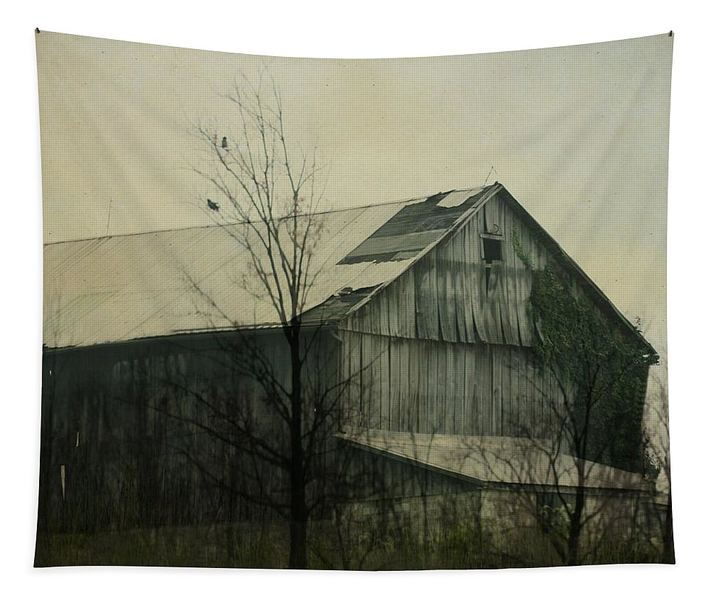 Barn Tapestry featuring the photograph Needs Repair by Gothicrow Images
