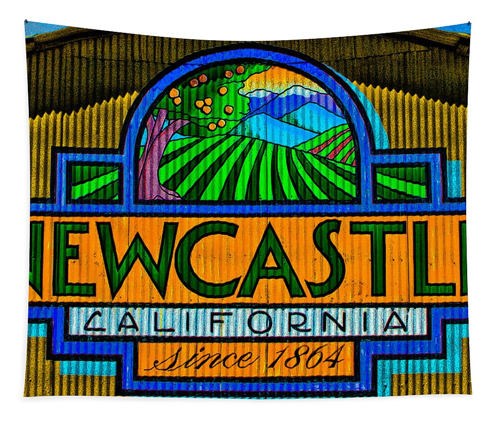 Newcastle Ca Tapestry featuring the photograph Newcastle by Mitch Shindelbower