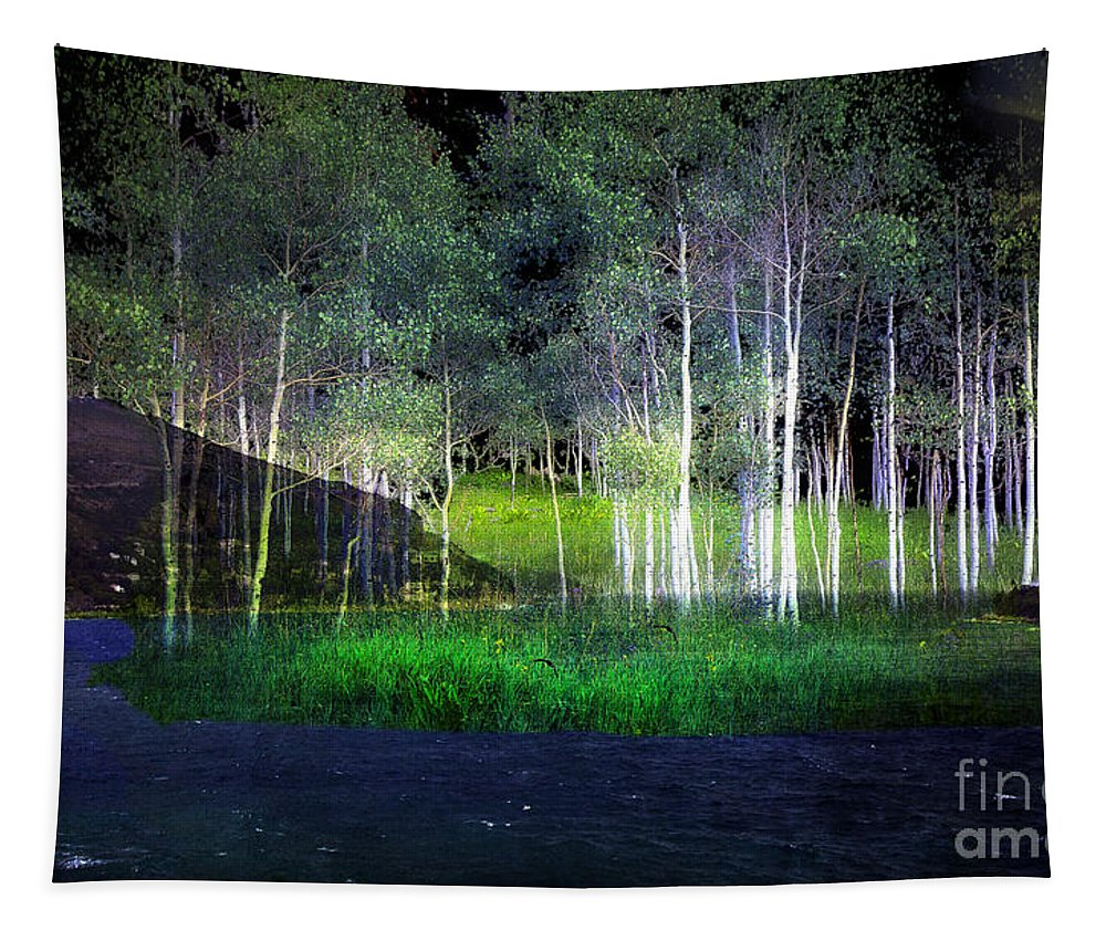 Trees Tapestry featuring the photograph Night Magic I by Madeline Ellis
