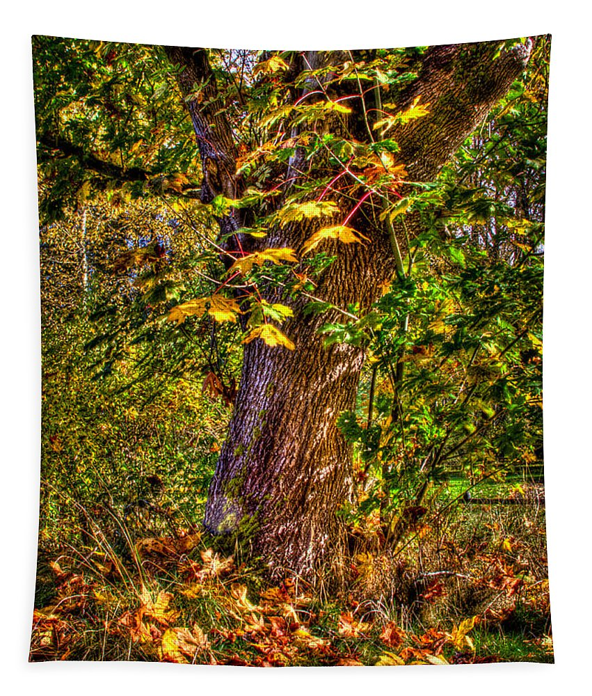 Nisqually Tapestry featuring the photograph Nisqually Wildlife Refuge P12 The Maple Tree by David Patterson