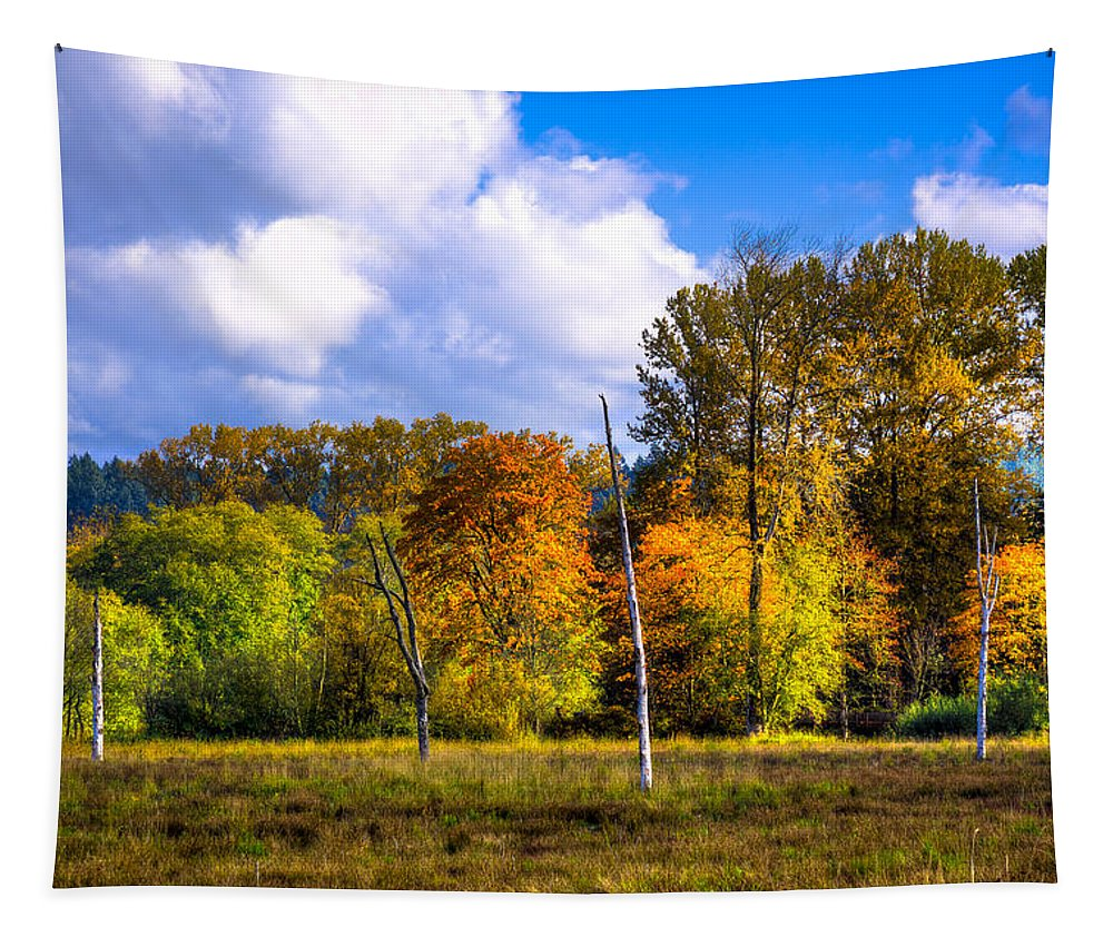 Nisqually Tapestry featuring the photograph Nisqually Wildlife Refuge P22 by David Patterson