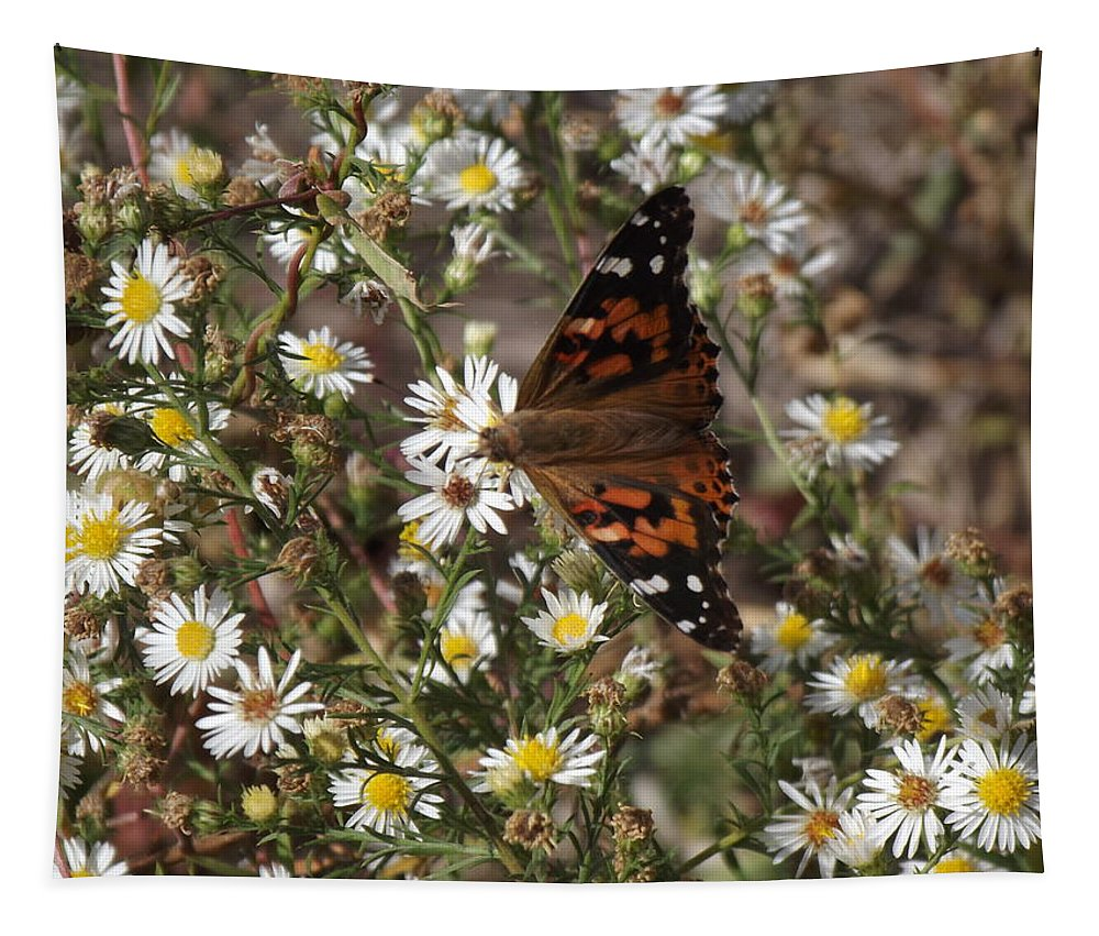 Painted Tapestry featuring the photograph October Surprise by Bonfire Photography