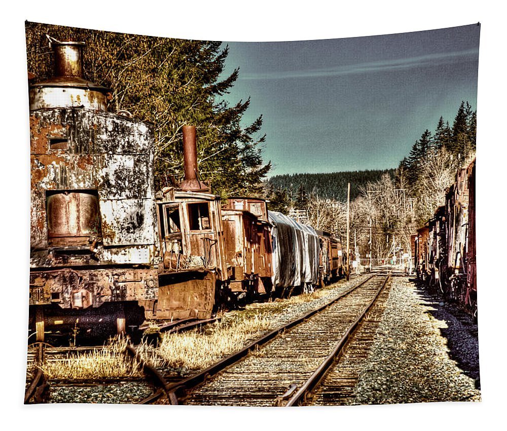 Trains Tapestry featuring the photograph Off Track II by David Patterson