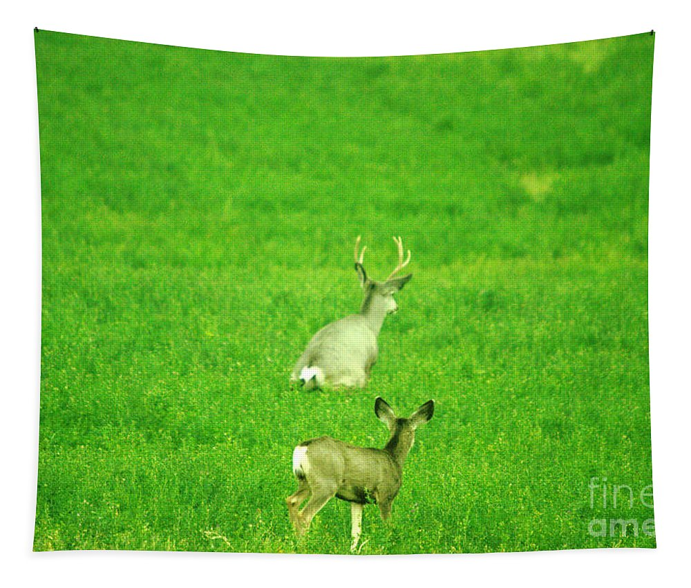 Deer Tapestry featuring the photograph Oh For The Love Of Pete by Jeff Swan