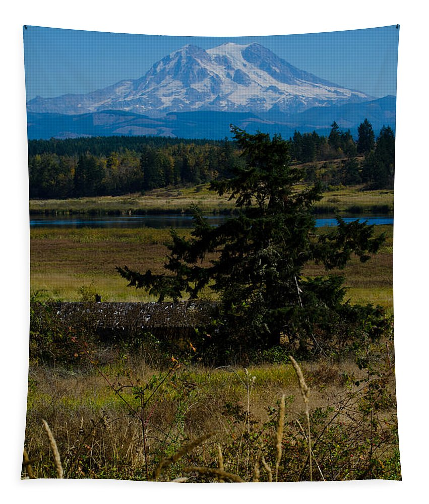 Ohop Tapestry featuring the photograph Ohop Valley Rainier by Tikvah's Hope