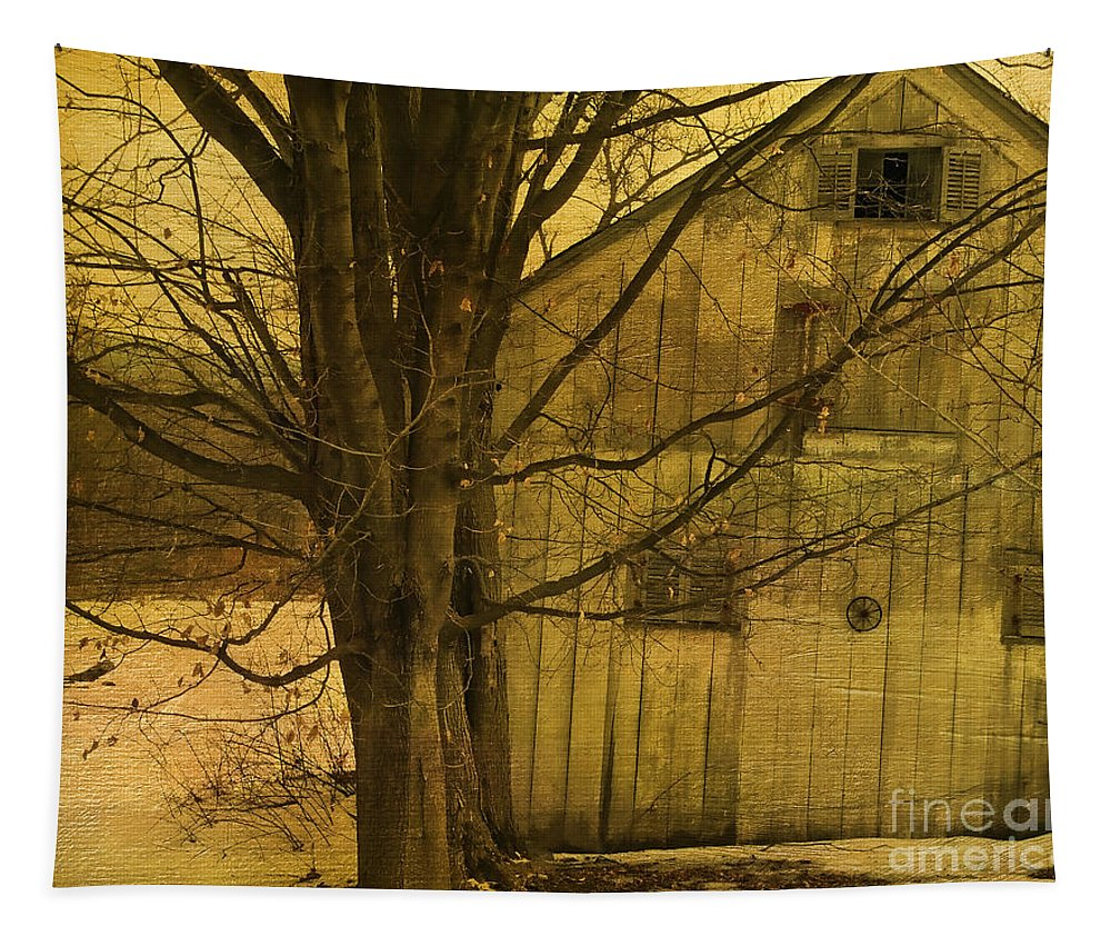 Tree Tapestry featuring the photograph Old And Crooked by Deborah Benoit