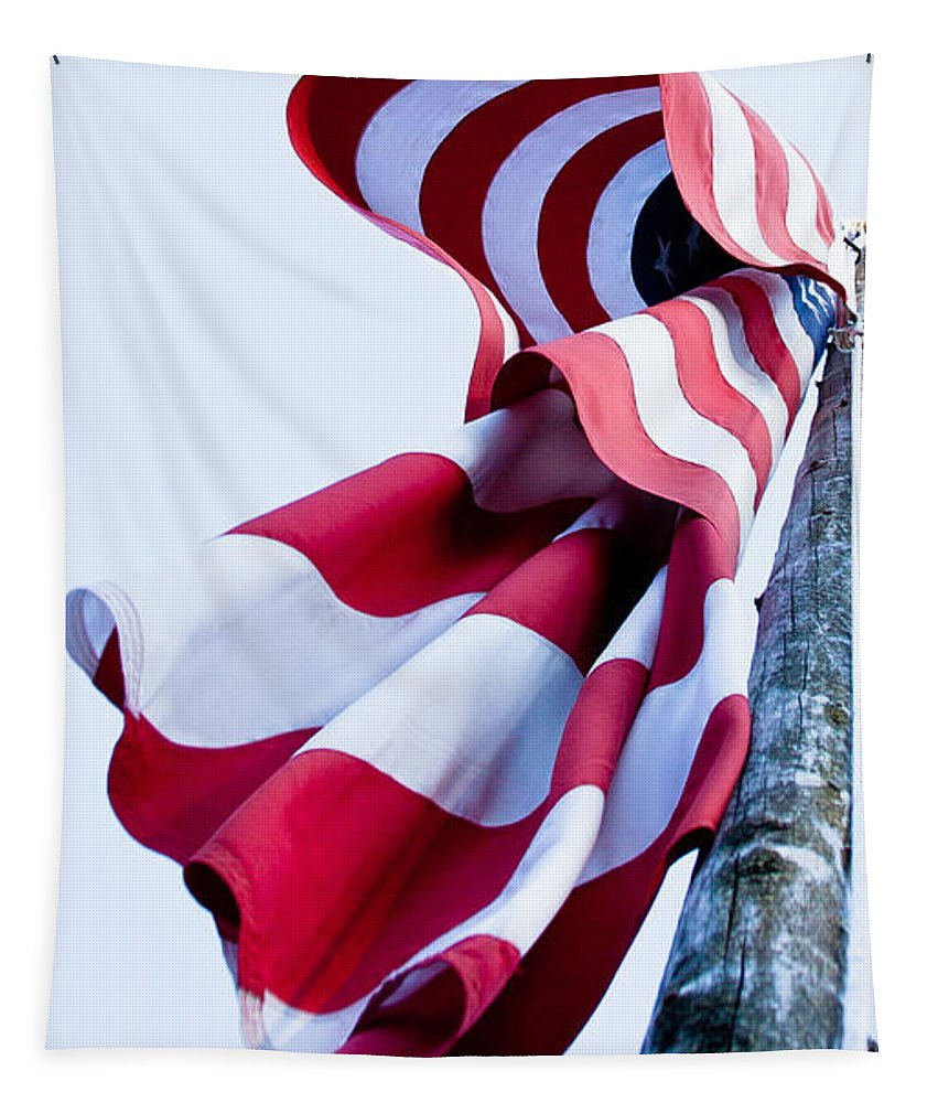 Flag Tapestry featuring the photograph Old Glory by David Patterson