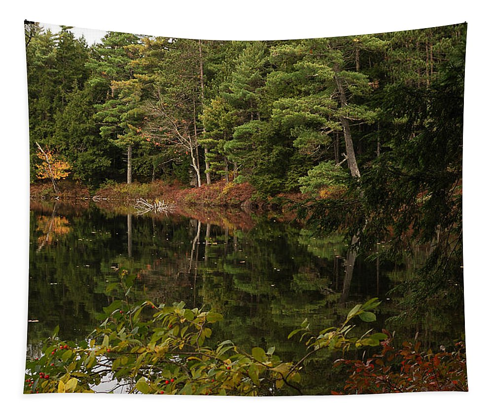 Nature Tapestry featuring the photograph Once Upon An Autumn Morn by Susan Capuano