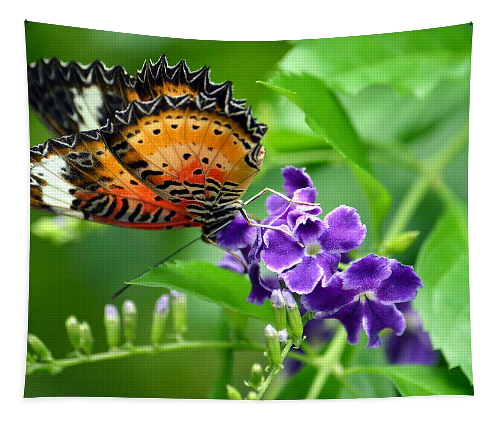 Butterfly Tapestry featuring the photograph Orange Beauty by Richard Ortolano