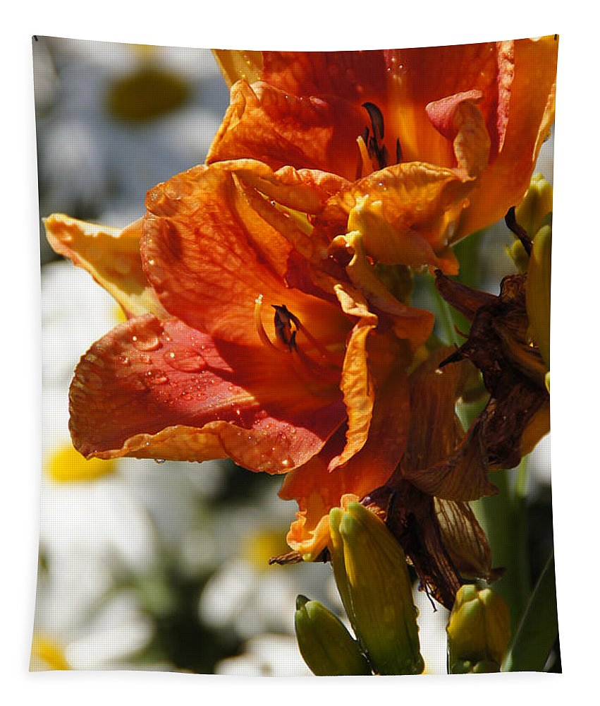 Orange Tapestry featuring the photograph Orange Day Lilies In The Sun by Mick Anderson