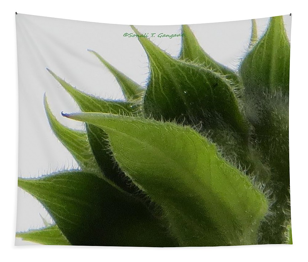 Green Crown Tapestry featuring the photograph Ornamental Calyx by Sonali Gangane