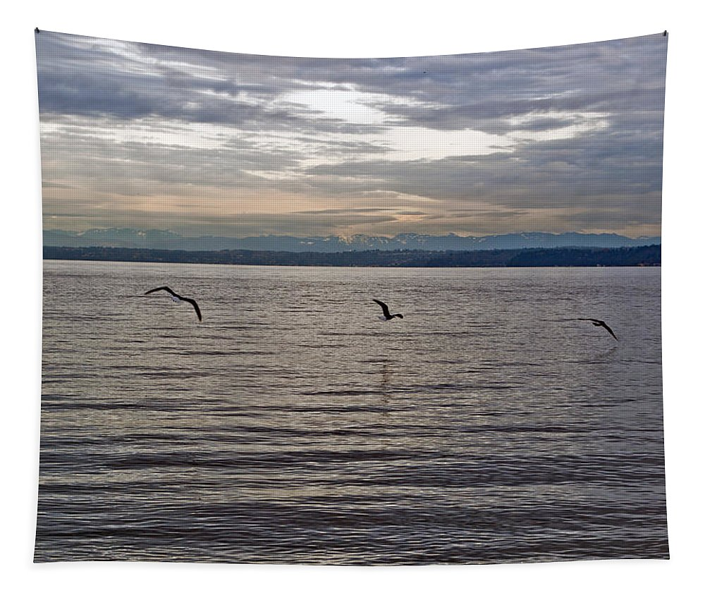 Puget Sound Tapestry featuring the photograph Owen Beach by Tikvah's Hope