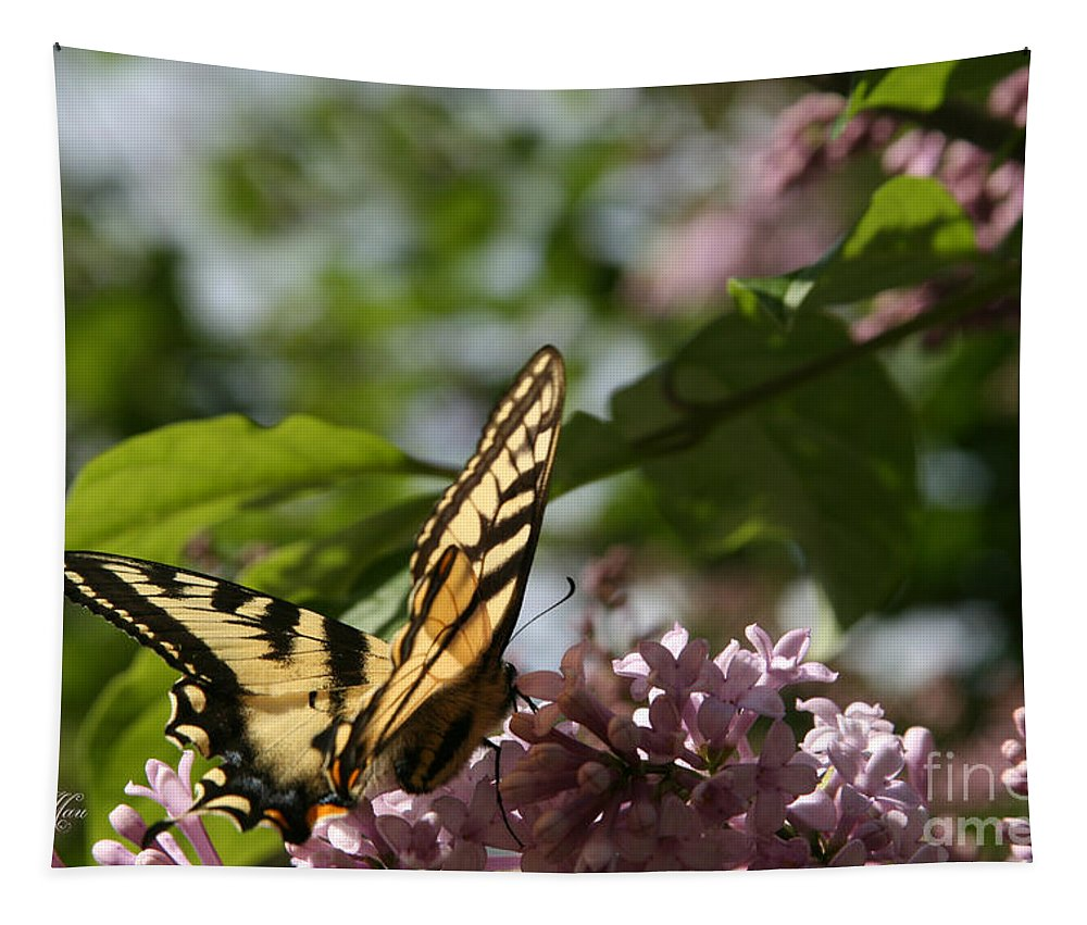 Aloha Tapestry featuring the photograph Papilio Glaucus  Eastern Tiger Swallowtail by Sharon Mau