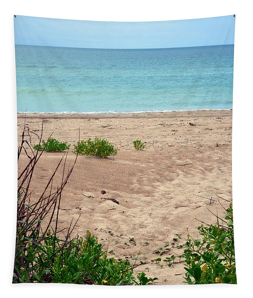 Beach Tapestry featuring the photograph Pathway To The Beach by Sandi OReilly