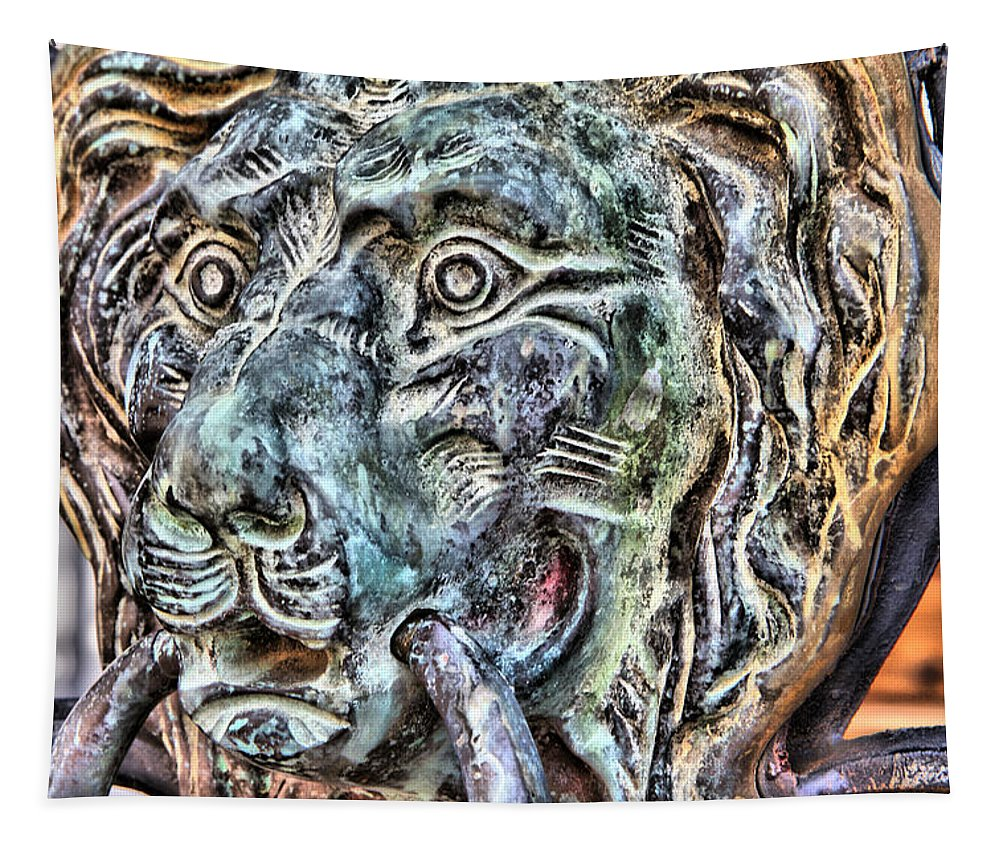 Lion Door Knocker Gate Tapestry featuring the photograph Patina by Alice Gipson