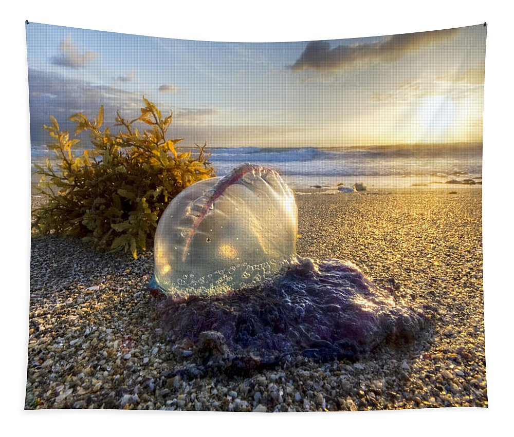 Blowing Tapestry featuring the photograph Pearl Of The Sea by Debra and Dave Vanderlaan