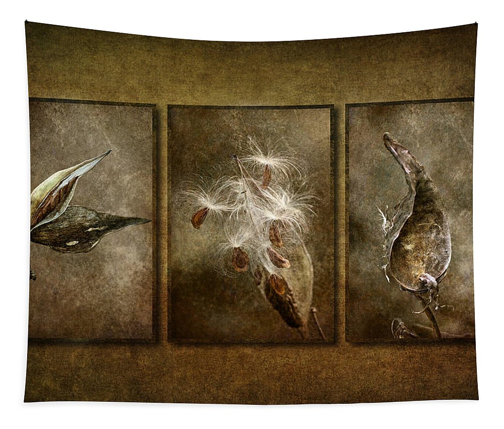 Milkweed Pod Tapestry featuring the photograph Perpetual Generations by Dale Kincaid